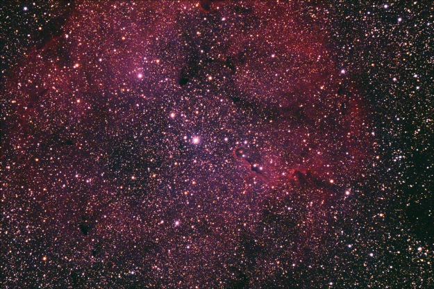 Elephant Trunk Nebula