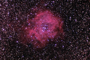 Rosette Nebula, Torrey, 2/16/2015