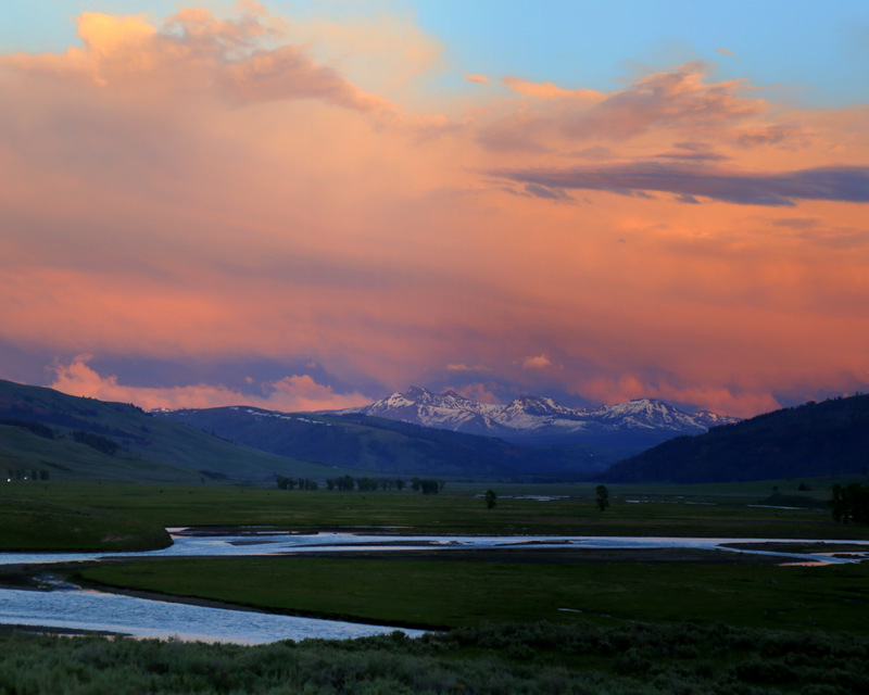 Lamar Valley, June 11, 2017