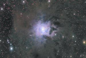 Iris Nebula, NGC 7023. Torrey House - Alpenglow Observatory. Mark Bailey